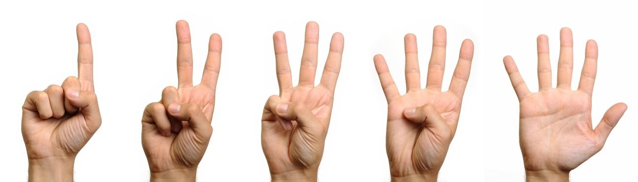 1-2-3-4-5-fingers-on-hand1.jpg